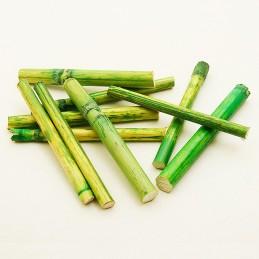 Décoration tige en bambou 8cm